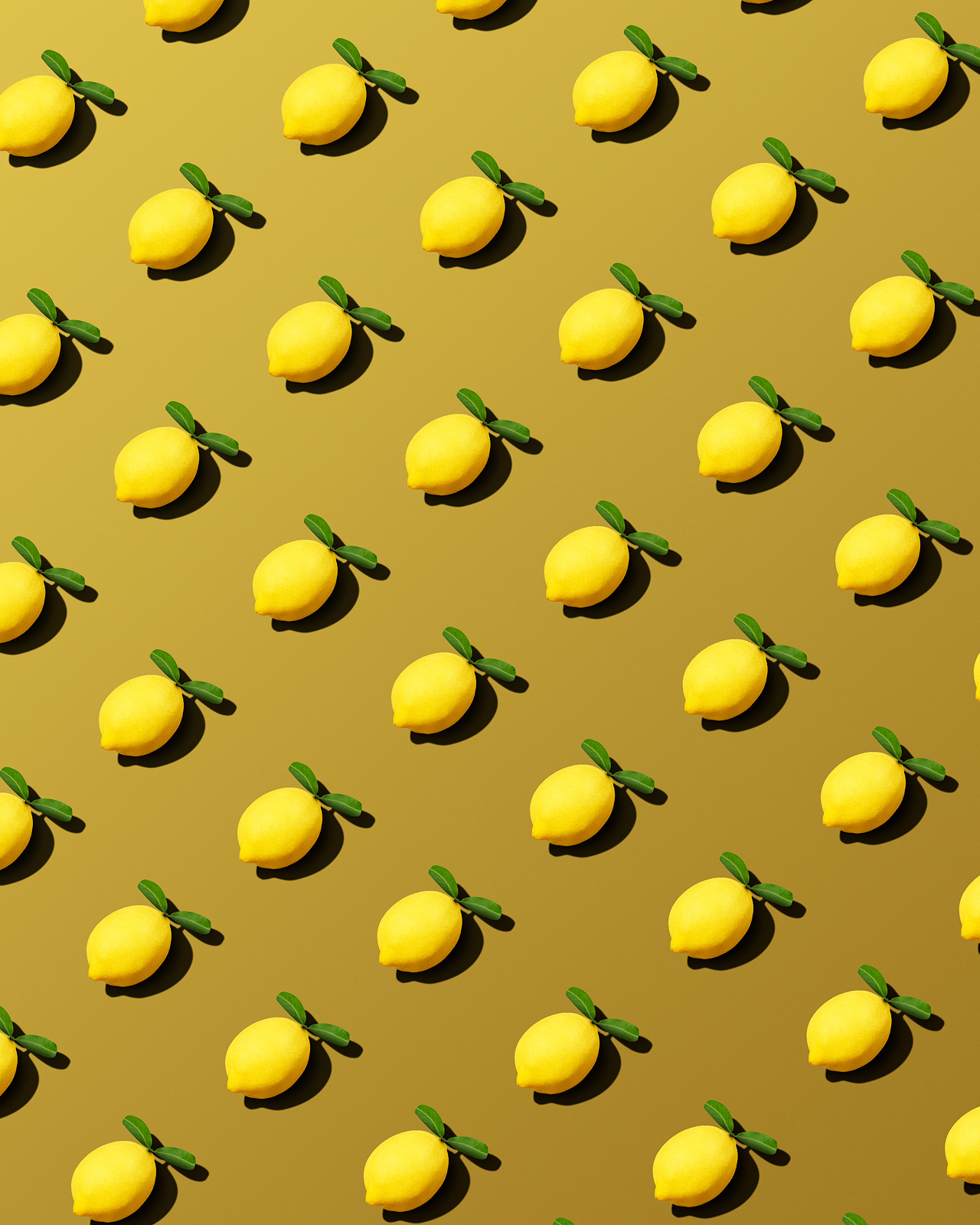 Lemons by Vancouver Still Life Photographer