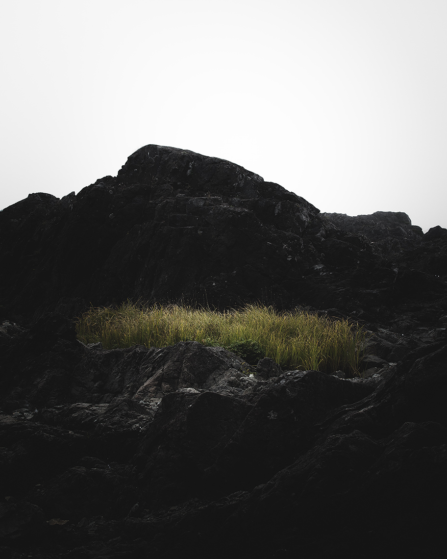 I - Black Rocks, Ucluelet // April is the cruellest month, breeding